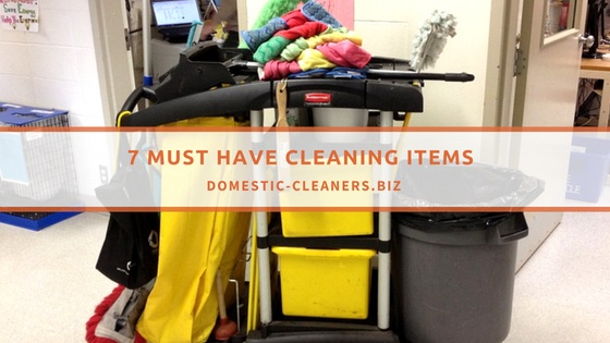 Must Have Cleaning Items